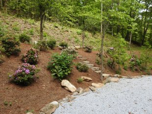 Landscaped hill and rock steps next to parking area